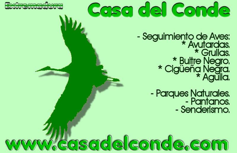Extremadura paraiso ornitologico